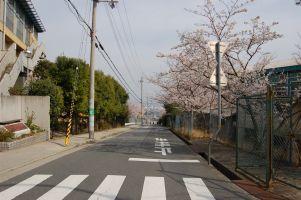 2008-04-08-06.jpg