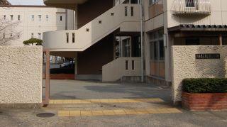 2008-04-08-07.jpg