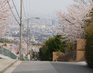 2008-04-08-10.jpg