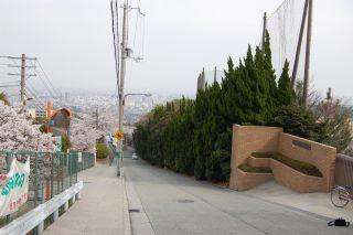 2008-04-08-11.jpg