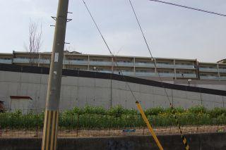 2008-04-08-18.jpg