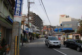 2008-04-08-21.jpg