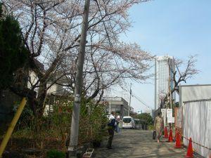 2008-04-22-01.jpg