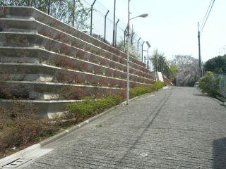 2008-04-22-03.jpg