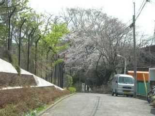 2008-04-22-04.jpg