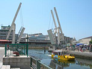 2008-05-09-15.jpg