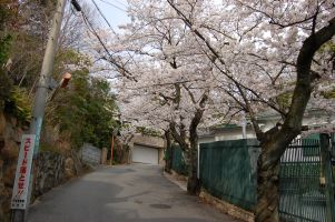 2008-04-08-03.jpg